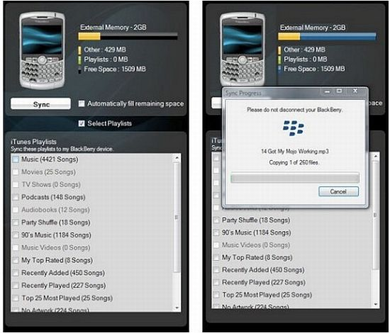 blackberry itunes media manager yggqA 1333