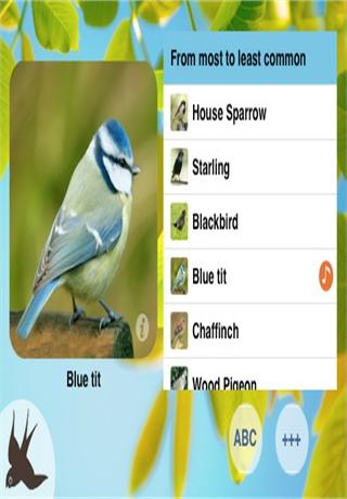 Chirp! Bird Songs of Britain and Europe