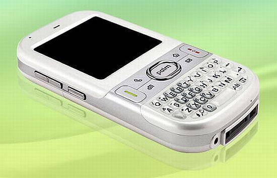 palm centro AWDsG 1333