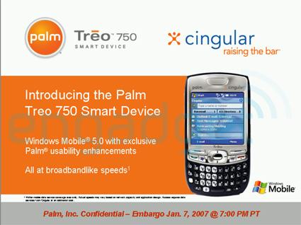 palm 63