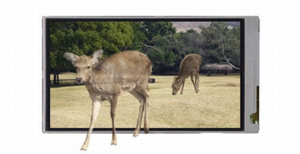 Sharp 3D cellphone display