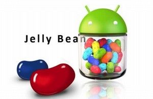 Install-Android-4.1.2-on-Nexus-7-Manually