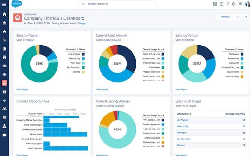 Financial Force Cloud Software Program